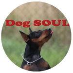 Dog SOUL - Ярмарка Мастеров - ручная работа, handmade