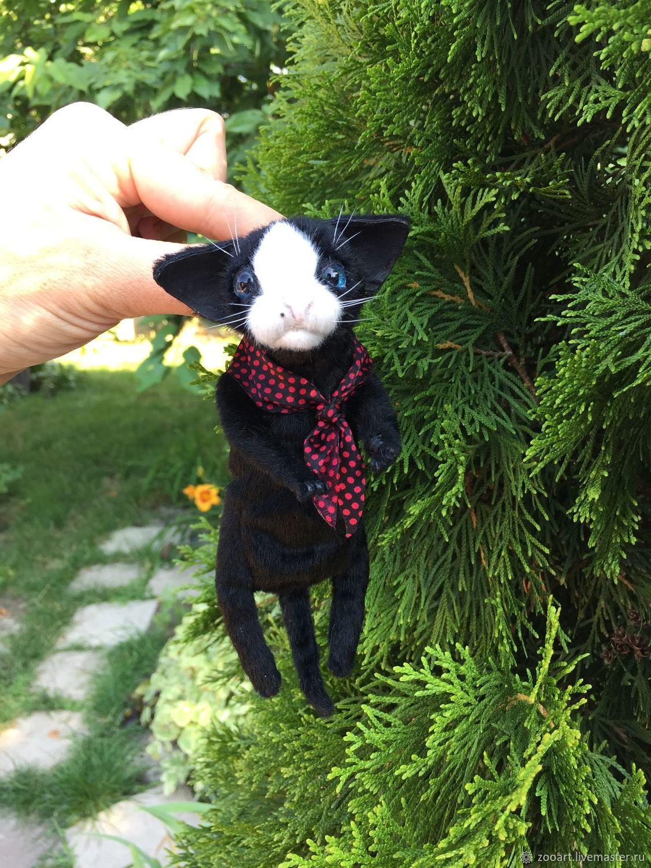 Котенок маленький ручной игрушка на заказ, Мягкие игрушки, Харьков,  Фото №1