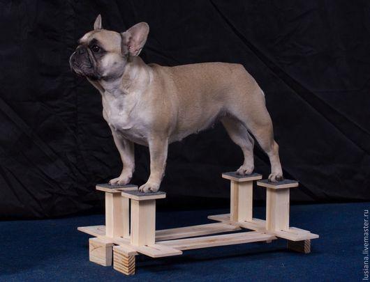 Аксессуары для собак, ручной работы. Ярмарка Мастеров - ручная работа. Купить Тренажер для отработки выставочной стойки у собаки.. Handmade.