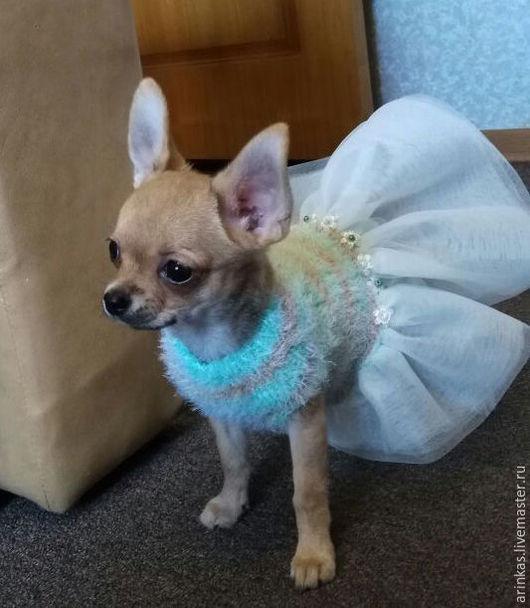 Одежда для собак, ручной работы. Ярмарка Мастеров - ручная работа. Купить Платье для маленькой принцессы. Handmade. Мятный, фатин