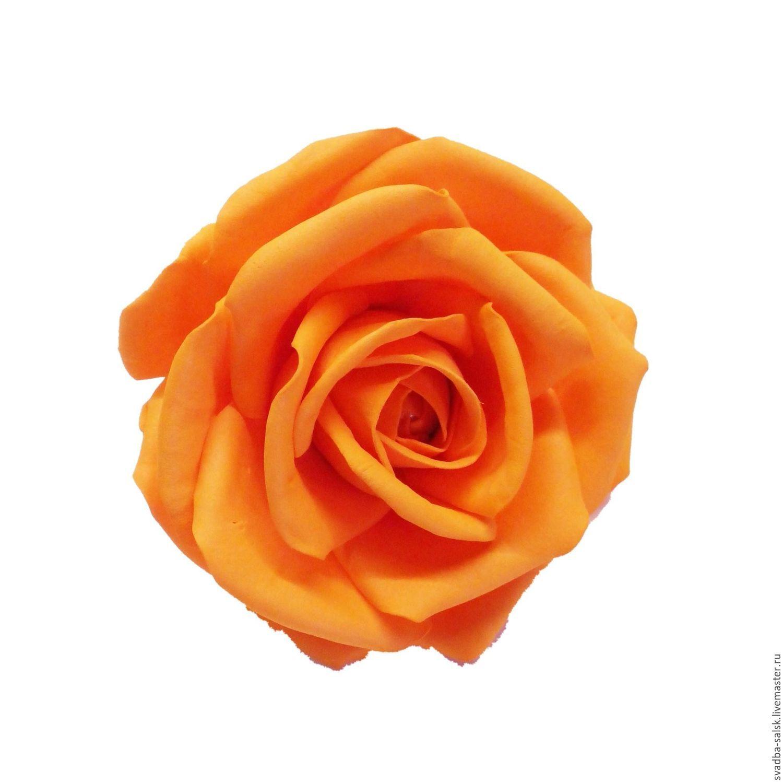 при роза с палкой картинка оранжевая усмотрение модераторов может