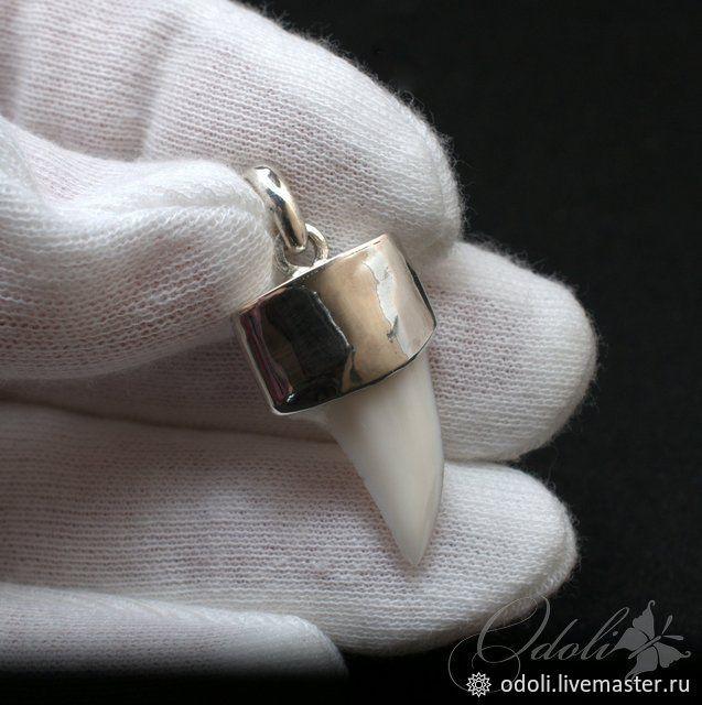 Зуб акулы в серебре, Украшения, Красноярск, Фото №1