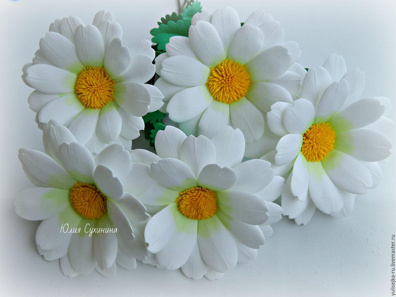 Купить цветы ромашка доставка цветов в тихорецке