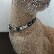 Зоотовары handmade. Livemaster - original item Collar of the ROYAL PERSON. Handmade.