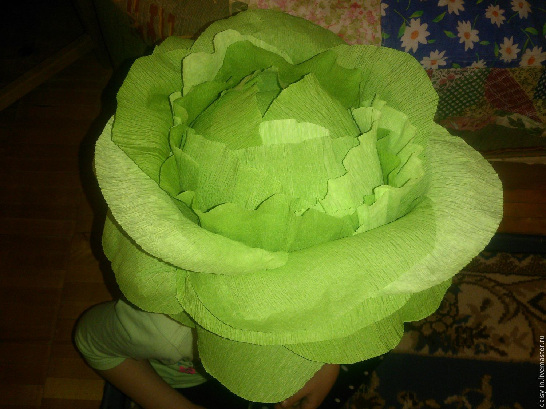 Как сделать из капусты шапку