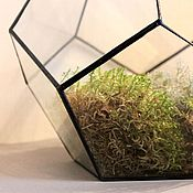 Для дома и интерьера handmade. Livemaster - original item The Floriana. Interior Floriana for plants. Mini-garden. Drop. Handmade.