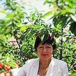Наталья Толстых Фасольки с глазками (nat-tol) - Ярмарка Мастеров - ручная работа, handmade