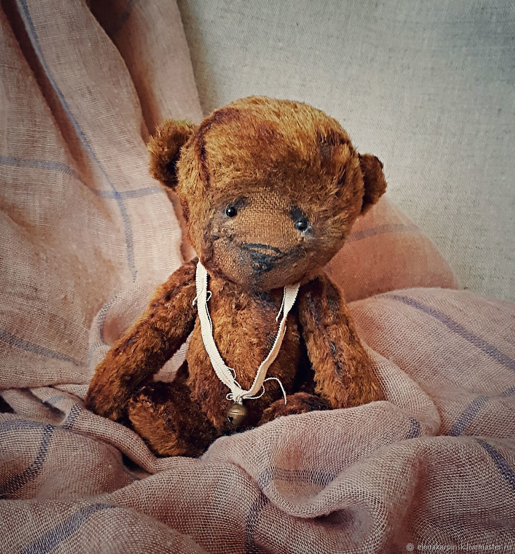 Mitya, Teddy Bears, Karpinsk,  Фото №1