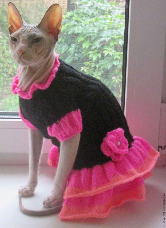 Одежда для кошек, ручной работы. Ярмарка Мастеров - ручная работа. Купить Платье для кошки. Handmade. Комбинированный, одежда для кошек