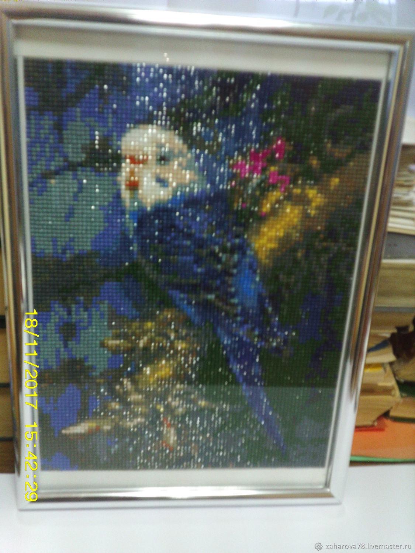 алмазная мозаика Попугай, Картины, Горнозаводск, Фото №1