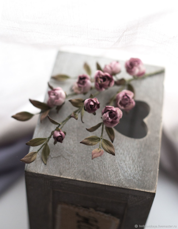 Шелковые розочки, Цветы, Петергоф,  Фото №1