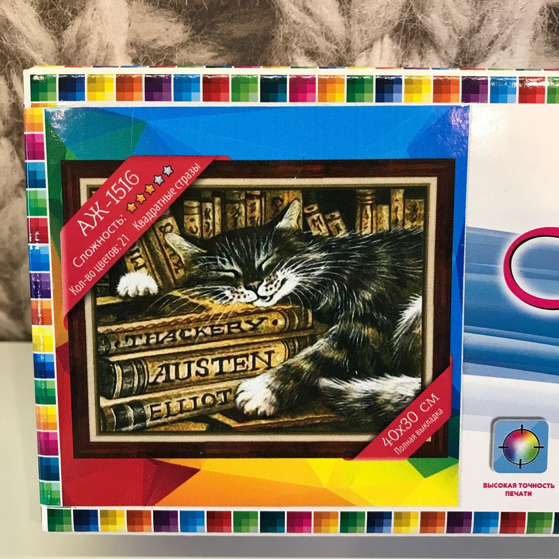 Картина стразами «Кот библиотекарь», Алмазная мозаика, Москва,  Фото №1