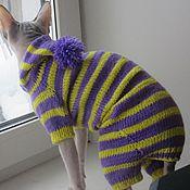 Для домашних животных, ручной работы. Ярмарка Мастеров - ручная работа Комбинезоны для сфинкса. Handmade.