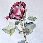 """Картины и панно ручной работы. Ярмарка Мастеров - ручная работа Картина акварелью """"Роза"""". Handmade."""