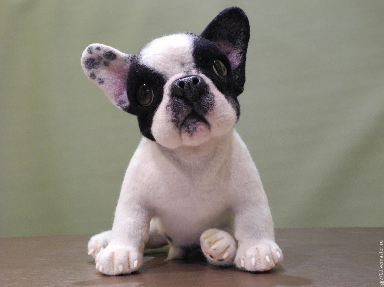 фото щенков бульдога