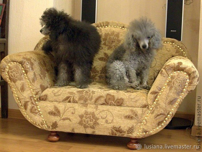 Sofa for dogs and cats ' Venice'. Available in size, Accessories for Pets, Ekaterinburg,  Фото №1