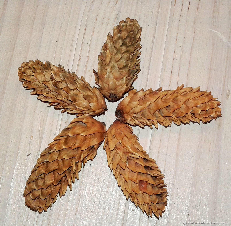 Water chestnut (chilim, rogulnik) 78