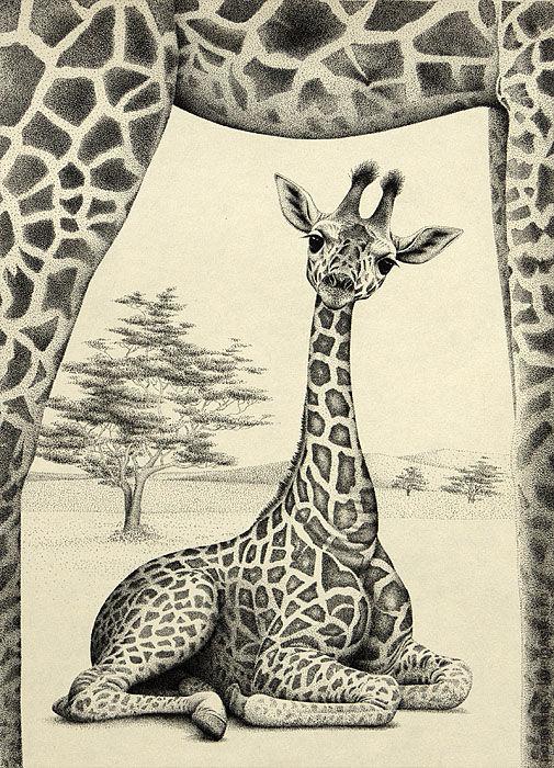 """Животные ручной работы. Ярмарка Мастеров - ручная работа. Купить Картина """"Жирафёнок"""". Handmade. Бумага, тушь, графика, животные, жираф"""