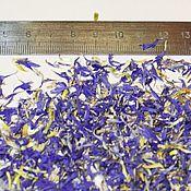 Травы ручной работы. Ярмарка Мастеров - ручная работа Лепестки василька (синего). Handmade.