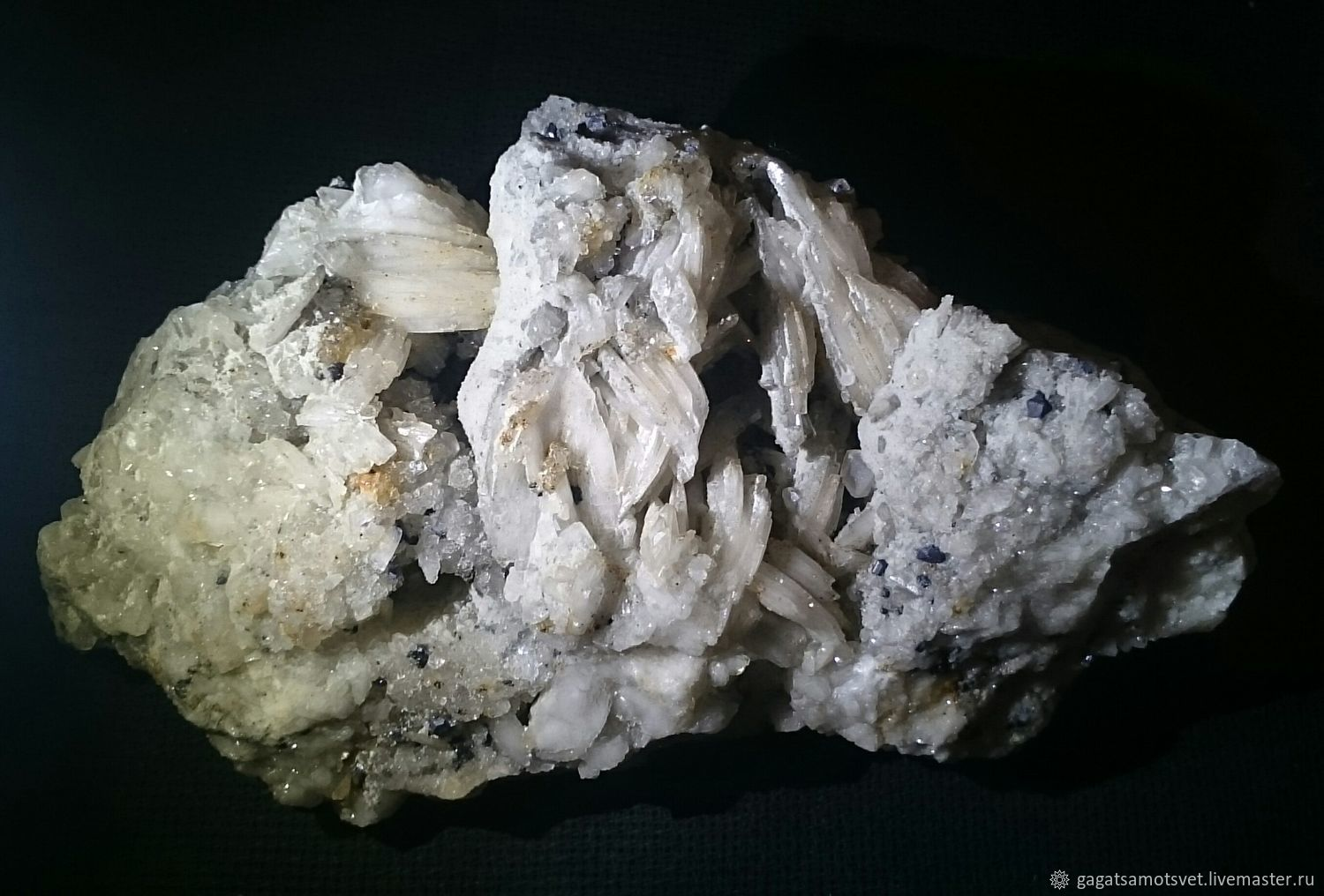 Barite with Galena( Adygeya Republic) and the Caucasus, Minerals, St. Petersburg,  Фото №1