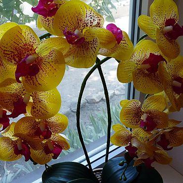 """Цветы и флористика ручной работы. Ярмарка Мастеров - ручная работа Орхидея """"Волшебная фантазия"""". Handmade."""