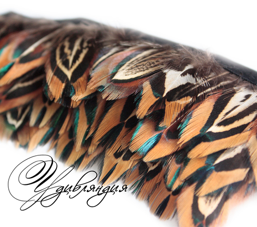 Другие виды рукоделия ручной работы. Ярмарка Мастеров - ручная работа. Купить Перо фазана на ленте, натуральное, неокрашенное №144.. Handmade.