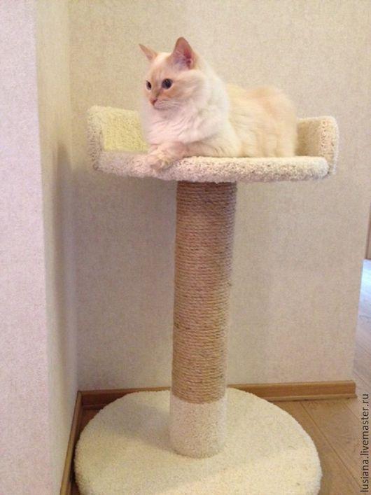 Аксессуары для кошек, ручной работы. Ярмарка Мастеров - ручная работа. Купить Когтеточка с лежанкой Цветок - подходит крупным кошкам. Купить. Handmade.