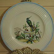 """Посуда ручной работы. Ярмарка Мастеров - ручная работа Тарелка """"Колибри"""". Handmade."""