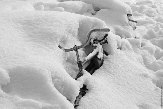 Фотокартины ручной работы. Ярмарка Мастеров - ручная работа. Купить до весны.... Handmade. Черно-белое фото, фото для интерьера