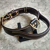 Для домашних животных, handmade. Livemaster - original item Leather collar, collar with handle, collar made of genuine leather. Handmade.