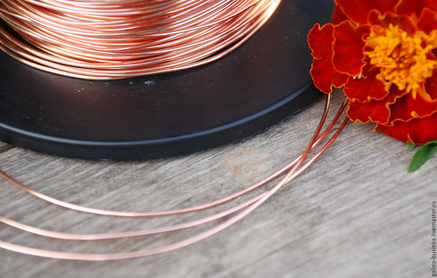 0,8 mm copper wire, Wire, Moscow,  Фото №1