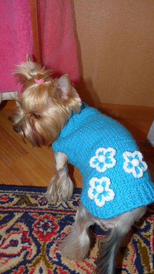 Одежда для собак, ручной работы. Ярмарка Мастеров - ручная работа. Купить Вязаные жилеты для собачек и кошечек. Handmade. свитер для собаки