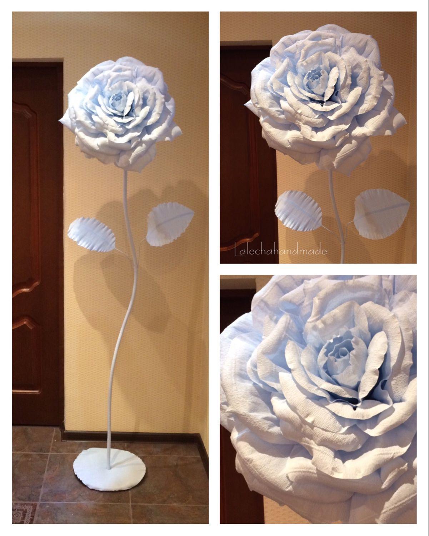 Гигантские розы купить омск