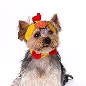 """Для домашних животных, ручной работы. Ярмарка Мастеров - ручная работа Вязаная шапка для собаки """"Петушок"""". Handmade."""