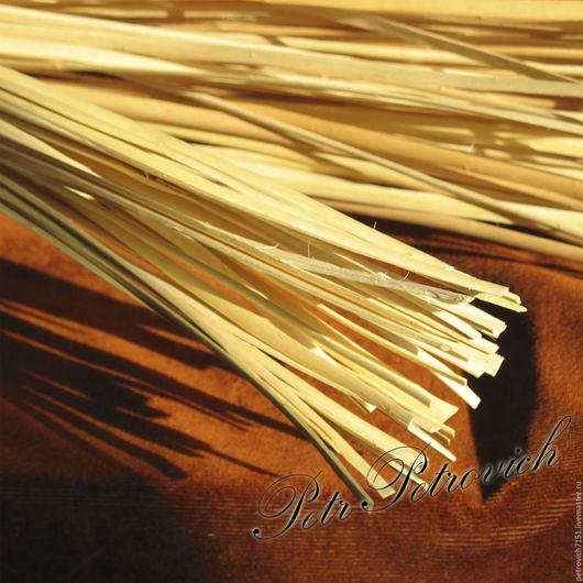 Другие виды рукоделия ручной работы. Ярмарка Мастеров - ручная работа. Купить Лента ивовая 3-5 мм длинна от 50 до100 см.. Handmade.