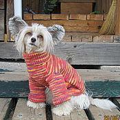 Для домашних животных, ручной работы. Ярмарка Мастеров - ручная работа Свитер для собаки. Handmade.