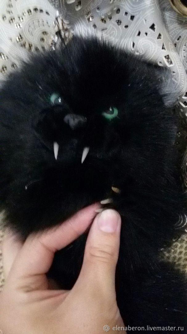Кот Мрякула