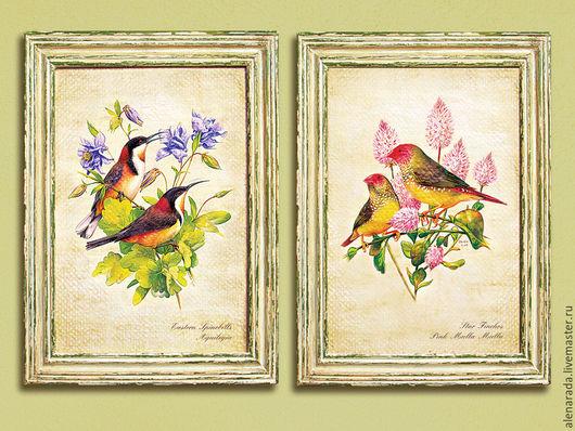Репродукции ручной работы. Ярмарка Мастеров - ручная работа. Купить Картины Птицы Австралии в состаренных рамах. Handmade. Картина, Австралия