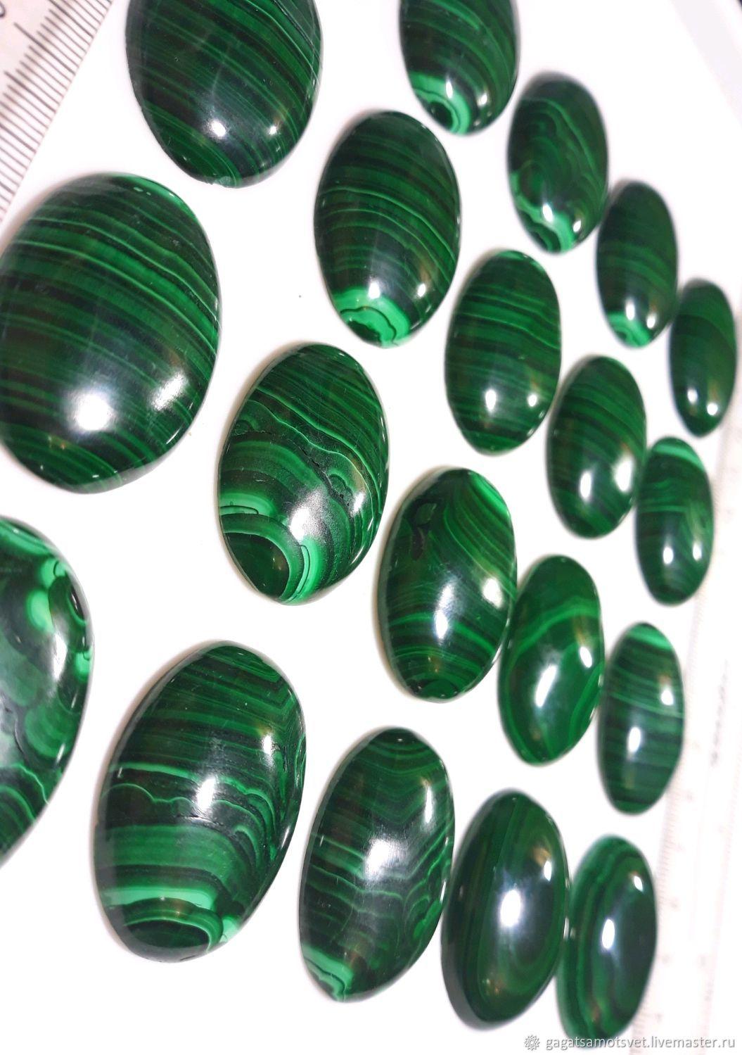 Malachite (cabochons 25/35 mm, ,26/35 mm) Kolwezi district, Katanga, AR Congo, Cabochons, St. Petersburg,  Фото №1
