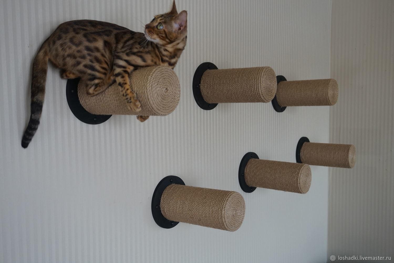 Комплект из 6 полок-когтеточек, Аксессуары для кошек, Отрадный, Фото №1