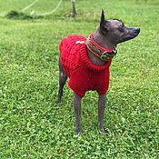 Зоотовары handmade. Livemaster - original item Xolo sweater with Buttons. Handmade.