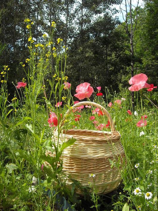 `Лето` Большая плетеная корзина из ивового прута. Натуральный прут, без лака. по желанию покупателя, можем покрыть лаком, без изменения цены.