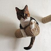 Для домашних животных, handmade. Livemaster - original item Scratching post shelf. Handmade.