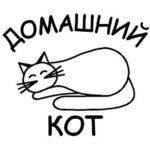 Даниил (domaschniykot) - Ярмарка Мастеров - ручная работа, handmade