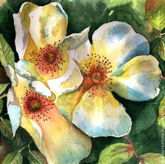 Картины цветов ручной работы. Ярмарка Мастеров - ручная работа. Купить Белые Розы. Акварель на бумаге.. Handmade. Комбинированный
