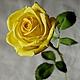 """Цветы ручной работы. Ярмарка Мастеров - ручная работа. Купить Роза """"Miracle""""  из фоамирана на стебле из холодного фарфора. Handmade. Желтый"""