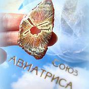 Украшения handmade. Livemaster - original item The brooch is painted on the rock