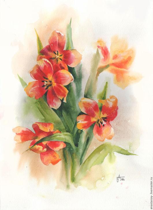 Распустившиеся тюльпаны. Беседина Анастасия