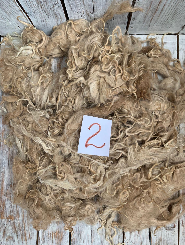Альпака Сури. Для валяния и прядения. 800 грамм. Флис, Войлок, Ядрин,  Фото №1