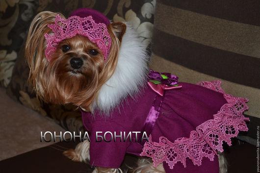 """Одежда для собак, ручной работы. Ярмарка Мастеров - ручная работа. Купить Комбинезон-пальто """"Ягода Черничка"""". Handmade. Тёмно-фиолетовый"""